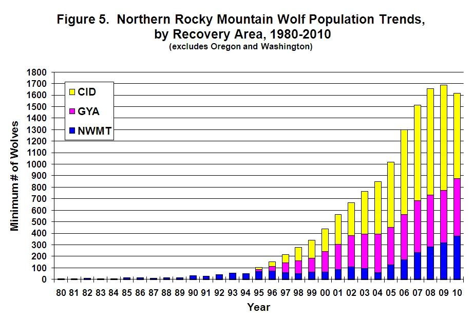 2010 Rockies The Northern Wildlife Wolf Report Released News
